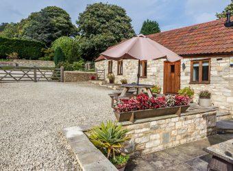Barncastle Cottage-25
